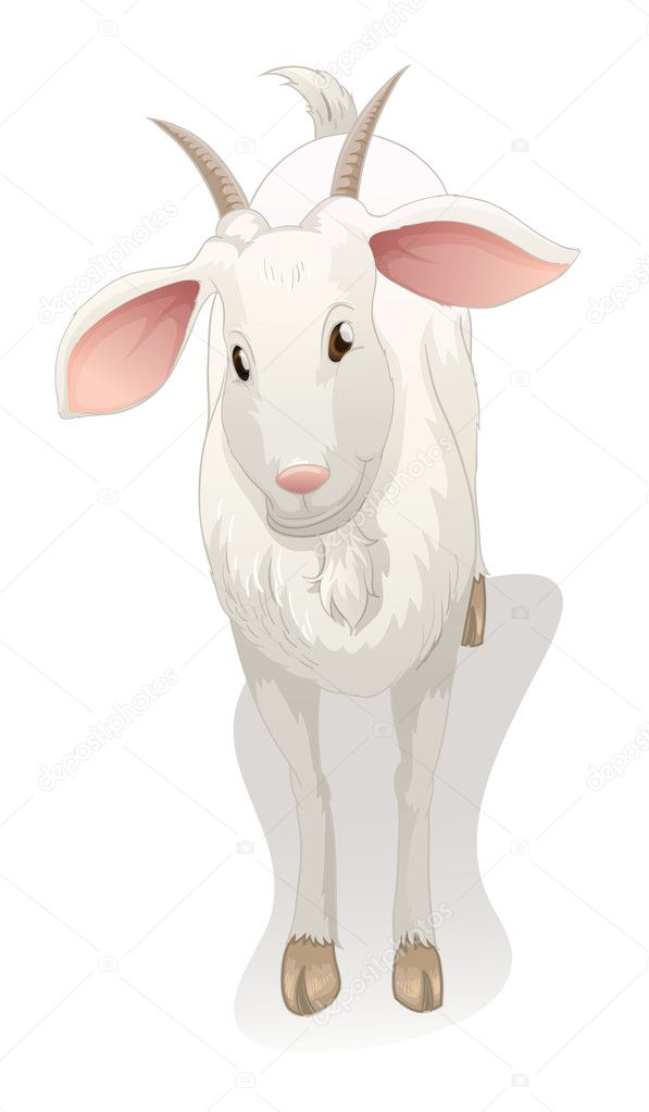 Illustration of a goat on a white background — Stock Vector #11721345