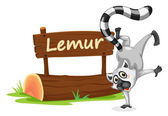 Lemur and name plate — Stock Vector