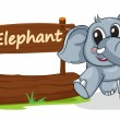 Elephant and name plate — Stock Vector