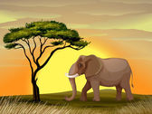 Elephant under a tree — Stock Vector