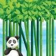 Panda - Vettoriali Stock 