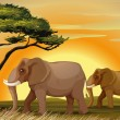 Stock Vector: Elephant under tree