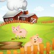 Pigs — Stock Vector #12284268