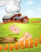 Pigs — Stock Vector