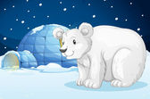 Egloo and bear — Stock Vector