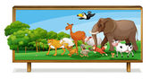 Animals in jungle on board — Stock Vector