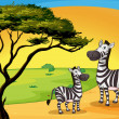 Two zebra under tree — Stock Vector