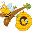 Honey bee and comb — Stock Vector