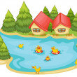 Duckling in a pond — Stock Vector