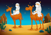 Arabs on camel — Stock Vector