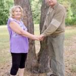 Happy elderly seniors couple — Stock Photo #11026038