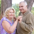 Happy elderly seniors couple — Stock Photo