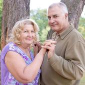 Happy elderly seniors couple — Stock Photo