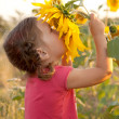 Baby smelling a big sunflower — Stockfoto