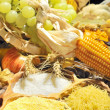 Harvest — Stock Photo #11087542