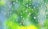 Drops of rain on the glass — Stock Photo