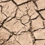 Cracked Soil Pattern Background — Stock Photo