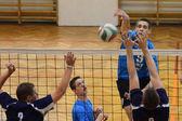Jogo de voleibol — Foto Stock