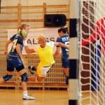 feherep - sparvagen Handbal spel — Stockfoto