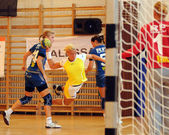 Feherep - Sparvagen handball game — Stockfoto