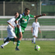 Kaposvar - Paks under 19 soccer game — ストック写真