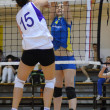 Hungarian junior volleyball champinship — Foto de Stock