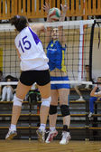 Hungarian junior volleyball champinship — ストック写真