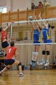 Hungarian junior volleyball champinship — 图库照片