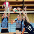 Kaposvar - Palota volleyball game — Stock Photo