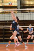 Kaposvar - Palota volleyball game — Stock Photo