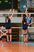 Kaposvar - juego de voleibol palota — Foto de Stock