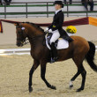 Dressage World Cup Competition - Stock Photo