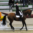 Dressage World Cup Competition — Zdjęcie stockowe