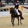 Dressage World Cup Competition - Photo