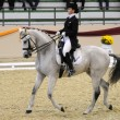 Dressage World Cup Competition - Foto Stock