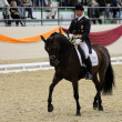 Dressage World Cup Competition — Stock fotografie