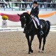 Постер, плакат: Dressage World Cup Competition