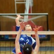 Kaposvar - Budai XI volleyball game — Stock Photo #12275932