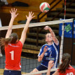 Kaposvar - Budai XI volleyball game — Stock Photo #12304787
