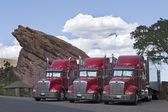 Semi camiones estacionados juntos — Foto de Stock
