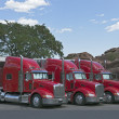 Semi Trucks Parked Together - Photo