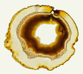 An Agate Gemstone — Stock fotografie