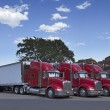 Semi Trucks Parked Together — Stock Photo #11600820