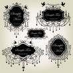 Set of luxury frames — Stock Vector