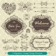 Calligraphic vintage design elements — Stock Vector