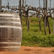 Stock Photo: Wine Barrel in Napa Vineyard