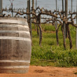 Wine Barrel in Napa Vineyard - Stock Photo