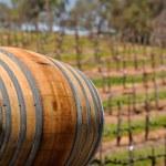Wine Barrel in Napa Vineyard — Stock Photo