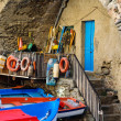 Riomaggiore Boats in Cinque Terre Italy — Stock Photo #11059834