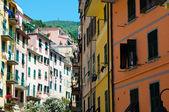 Buildings in Cinque Terre Italy — Stock Photo